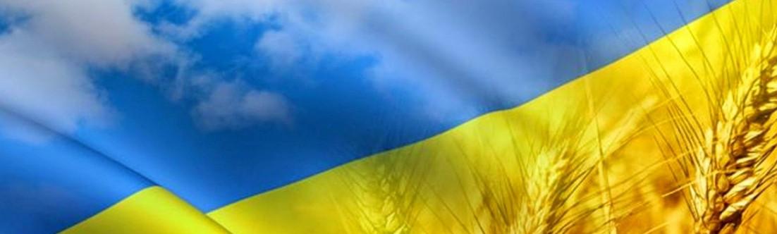 С днем государственного флага Украины